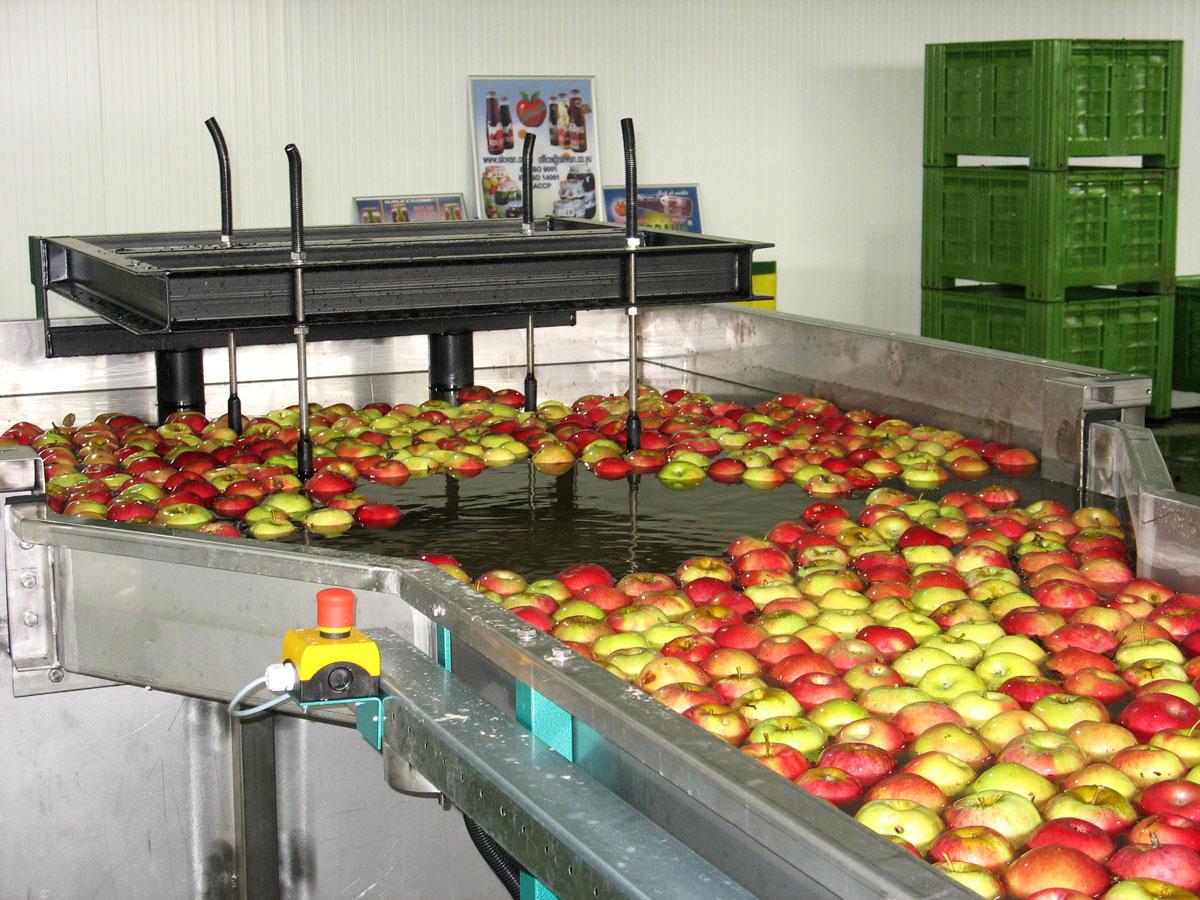 Cold Storage Plant Ripe Fruit Farm